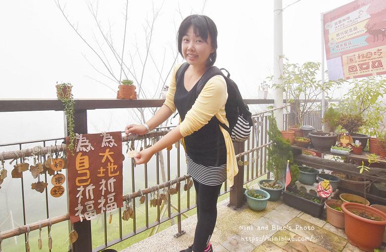 台灣好行嘉義阿里山奮起湖高蕾雅31