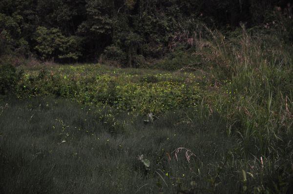草湳疊圖3.jpg