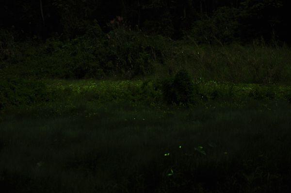 草湳疊圖6.jpg