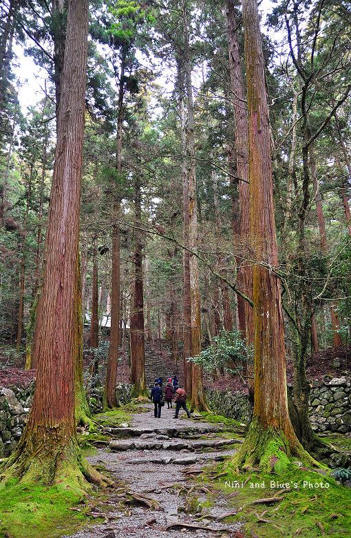 日本京都高雄高山寺古蹟05