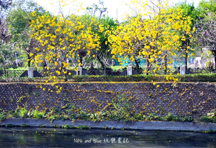 台中風鈴木19.jpg