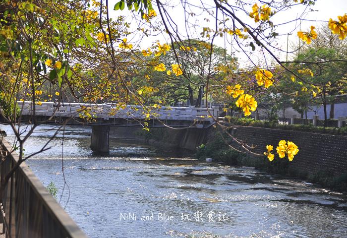 台中風鈴木25.jpg