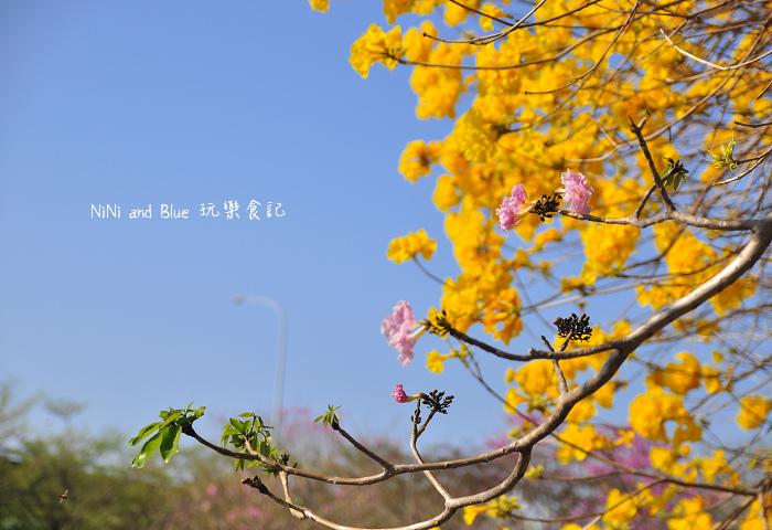 台中風鈴木24.jpg