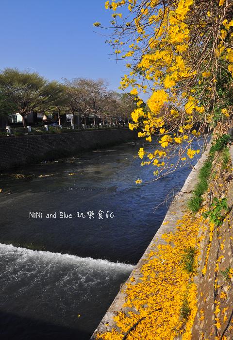 台中風鈴木30.jpg