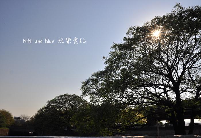 台中風鈴木33.jpg