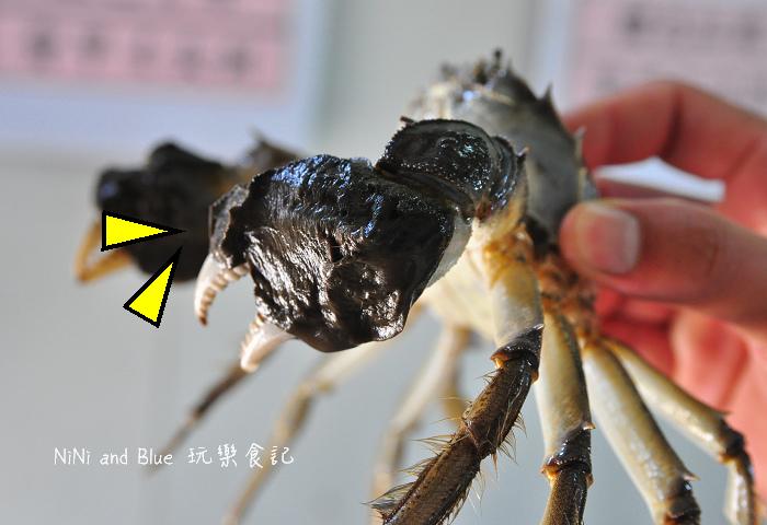 慶東大閘蟹-台灣19.jpg