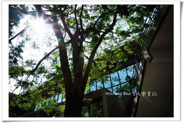 亞洲大學阿勃勒荷花10.jpg