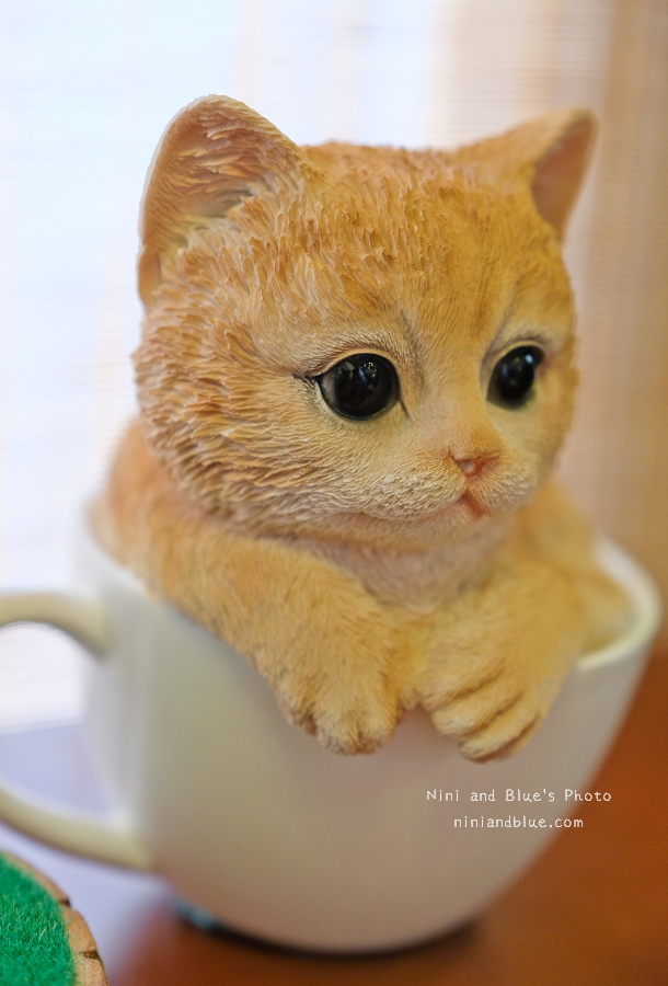 1504621086 54acb38e661c1c0c6756bd8753d9d08a - 日式小院子中的動物森林、多肉、玫瑰咖啡,小毛日子雜貨咖啡